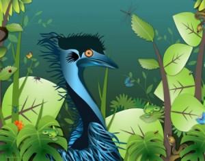 Blue Emu and Rain forrest.